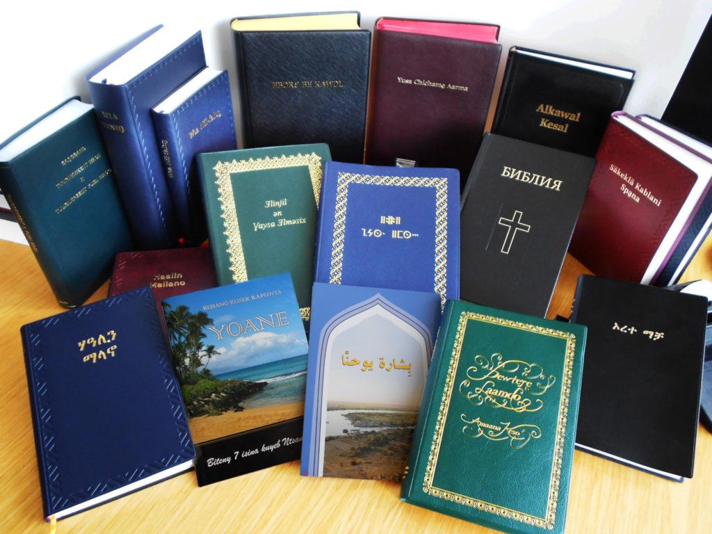 montage-bibles_07